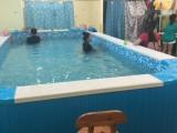 湖南衡阳幼儿园水育早教亲子池大型室内恒温游泳池制造商价格