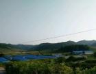 图们市石岘镇永昌村黄牛养殖厂房 7680平米