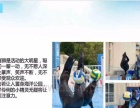 海洋生物展览价格海洋展出租海狮表演租赁