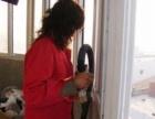 承接开荒、家庭保洁、一次性大扫除、钟点工,擦玻璃
