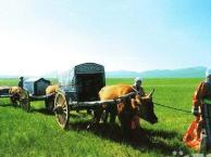 南宁、呼和浩特、希拉穆仁大草原、 内蒙古博物馆双卧七日游