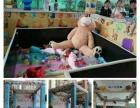 邯郸球幕影院 蜂巢迷宫 真人抓娃娃机活动道具租赁