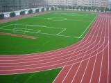 塑胶跑道施工 承建塑胶跑道 铺设塑胶跑道