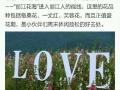 丽江花海,雪山,古镇,