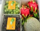 果缤纷水果品牌进驻广东啦