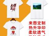 空白T恤印字热升华印图案圆领莫代尔纯白T恤班服活动广告衫印