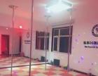 成人舞蹈减肥塑性培训舞蹈形体训练钢管舞古典拉丁形体