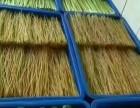 广州蔬菜配送公司 专业配送15年