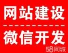 广州海宁商城返利模式系统定制开发
