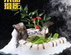 济南菜谱摄影 美食摄影