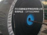 EP200输送带-尼龙输送带-宝象输送带-输送带生产厂家