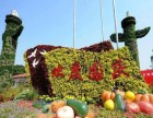 北京专业绿植租摆 国庆花坛设计摆放 仿真植物墙