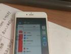 正品国行金色iPhone6plus(16G)保修期内转让
