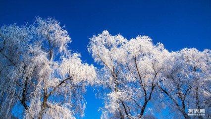 呼伦贝尔4日游(海满常规+市内滑雪篇)