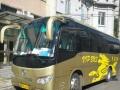 特价出租大巴车 承接公司通勤 会议 周边旅游 婚庆
