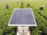 河南太阳能自动虫情测报灯价格 河南太阳能自动虫情测报灯销售
