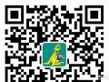 【柳州早教】亲亲袋鼠国际早教课堂免费试听啦