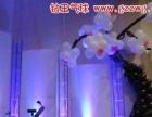 阳江气球布置 婚礼气球装饰 结婚气球布置