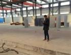五亭龙附近15000平米标准厂房出租,水电齐全