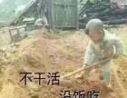 南丰县面包车出租,拉人,拉货,包天,跑长途均可。