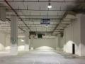 双凤桥大平米优质仓库,已入驻大批优质项目,速来看库