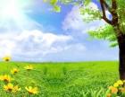 阜南韦迪保洁公司承接各种搬家保洁家政服务