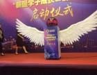 苏州创意设备天使启动翅膀出租