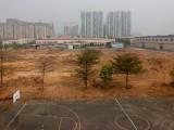 大旺黄金地段有70亩空地招商