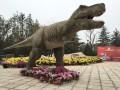 荆州霸王龙恐龙租赁最好的公司