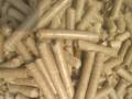 生物质木屑燃烧颗粒机