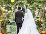 池州开幕拍摄 活动拍摄 人物拍摄婚礼拍摄 无人机拍摄
