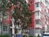 洛阳-房产2室2厅-52万元