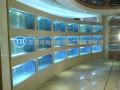 承接大型水族工程海鲜池鱼缸设计定做制作安装制冷维修