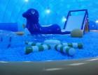 鲸鱼岛娱乐休闲夏季趣味游戏海洋球出租出售
