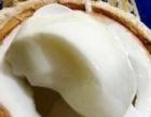 榴莲千层,奶酪包,提拉米苏,芝士卷,椰子冻