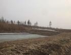 山林鱼塘土地出售 土地 平米
