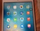 Ipad mini2甩卖,4月份买的,9.9层新