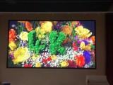 环翠电子全彩大屏幕led显示屏制作公司