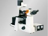 上海締倫倒置熒光顯微鏡DXY-1