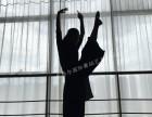 杭州钢管舞教练培训考证机构
