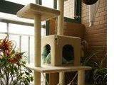 批发一米五高全新猫爬架
