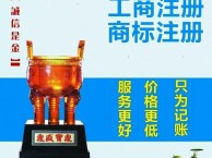 天津市内六区新四区0元办照 代理记账 无经营地址成立公司