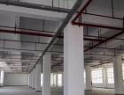 集美标准一楼厂房出租