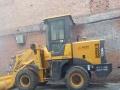 20铲车出租,承接扒房改造土方活,垃圾清运,有王牌车队。