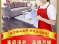 专业承接公司 大型公共场所保洁 瓷砖美缝地毯清洗