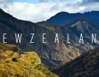 新西兰移民一站式,天津本地公司