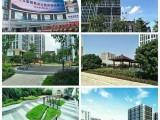 佛山附近医养结合养老院 大型正规高档泰成逸园