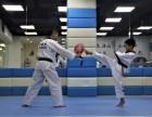 深圳市龙华区专业3-16岁少儿跆拳道培训