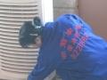 《强推》杭州保洁、家庭日常保洁、开荒保洁、玻璃清洗