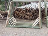 北京竹子價格哪里有賣竹片出售